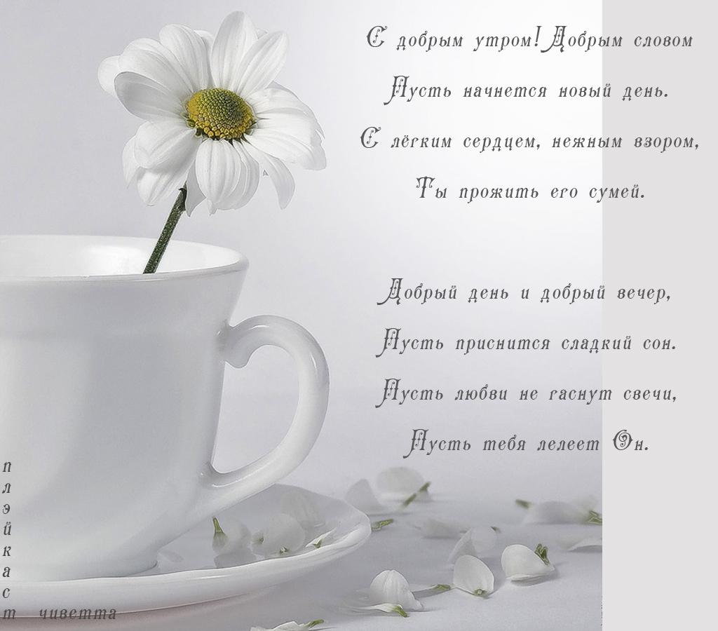 Стих пожелание хорошего дня милому
