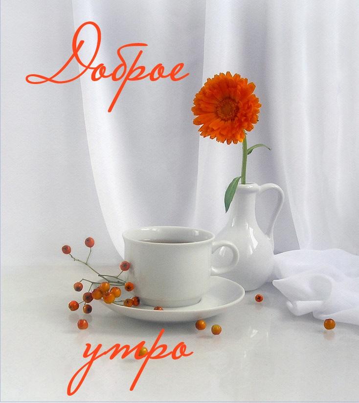 видео ниже фото с пожеланиями доброго утра любимой красной икры кеты