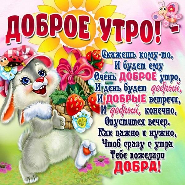 Смешные картинки с добрым утром подругам, ефимова
