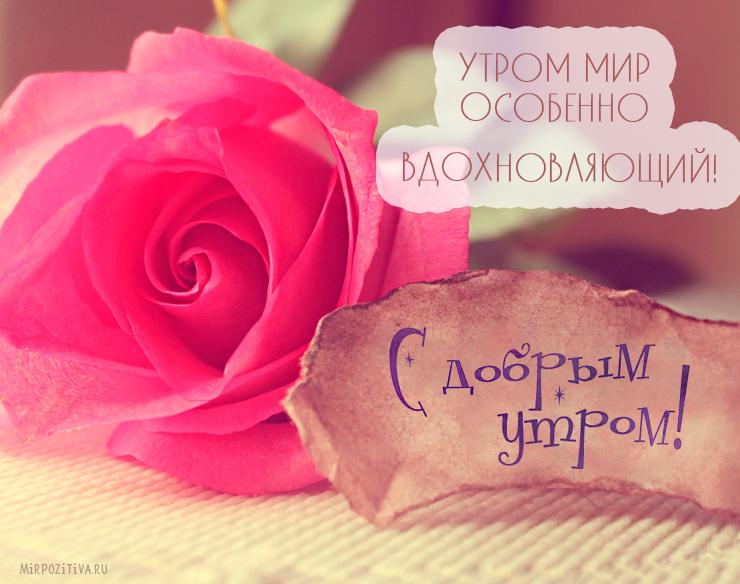 Пожелание доброго утра любимой девушке открытки, открытку
